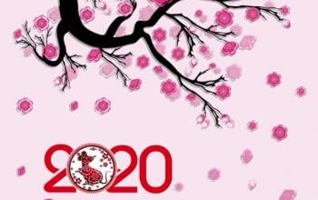 canh-dao-2020-canh-ty