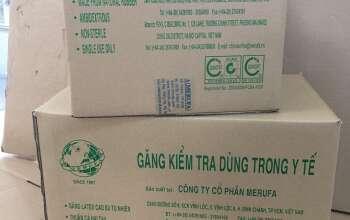 Thung GKT_KB_L